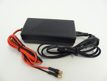 Electric Charger for E-Baja Li-Fe 8000 mah battery, Lithium Ion